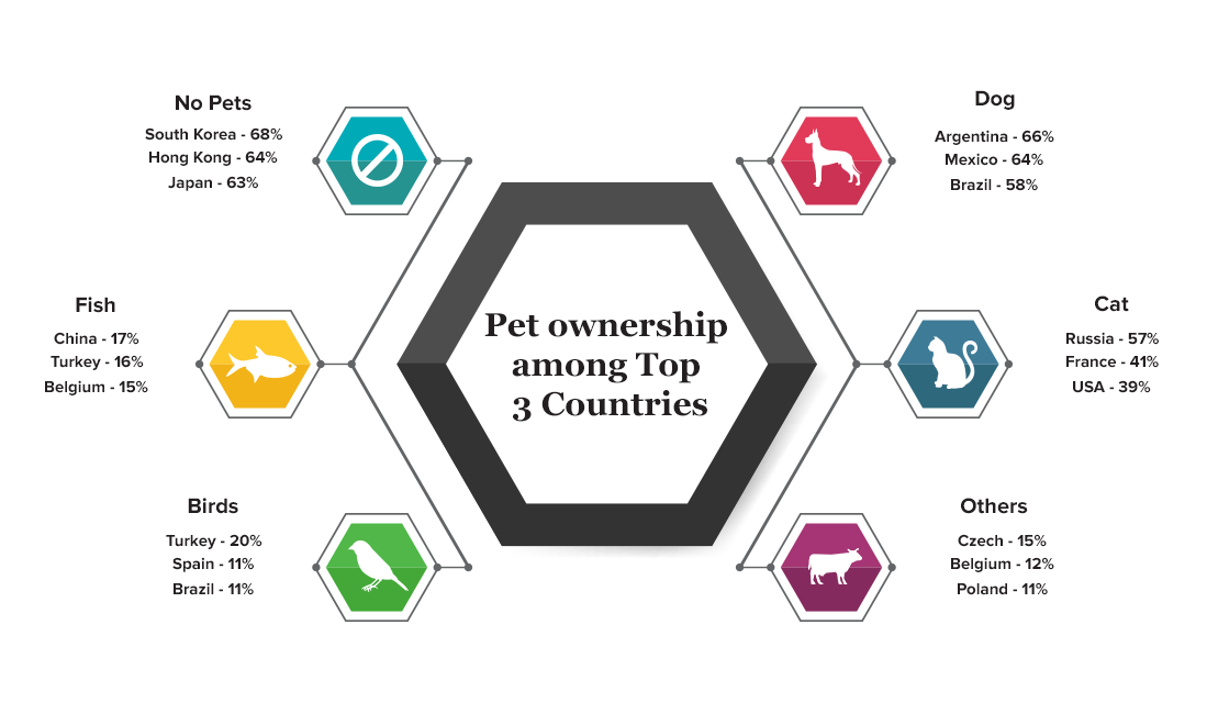 Pet Ownership Among 3 Countries